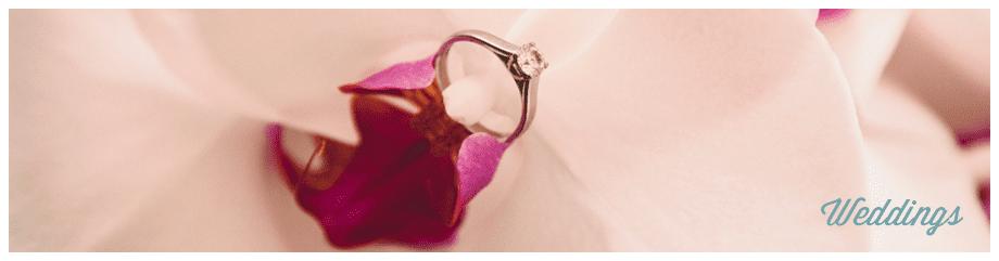 weddings-button