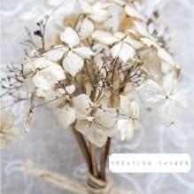 Deadhead Flowers