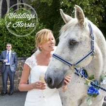 Bride with a white horse
