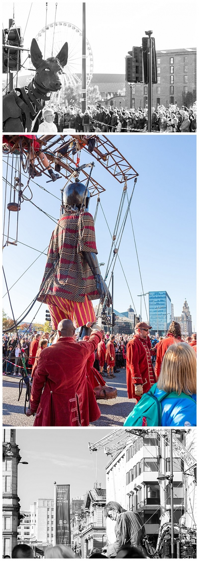 Arts,Culture,Cumbria,Fine Art Photography,Joanne Withers Photography,Liverpool,Photographer Cumbria,Royal de Luxe,St Marks Stays,The Giants,